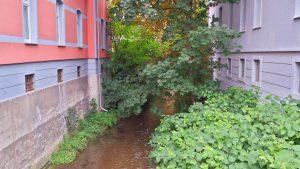 Речка в Эрфурте