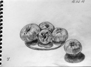Яблоки Антоновка. Карандаш