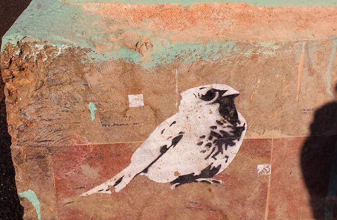 Уличное граффити. Птица на стене