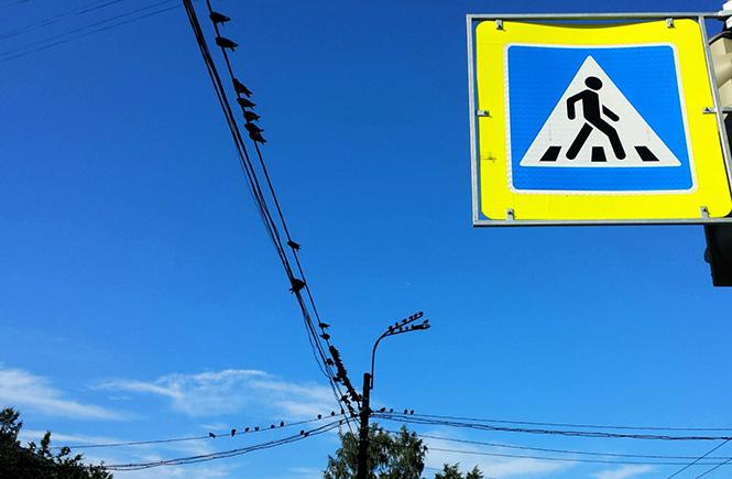 небо и голуби Петербурга