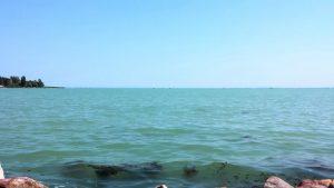 Зеленая вода озера Балатон