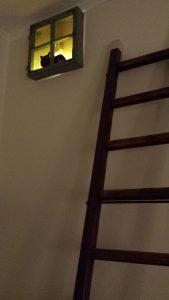 Лестница, окошко, кот