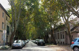 Фруктовая улица