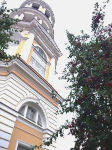 Колокольня Владимирского собора яблоня