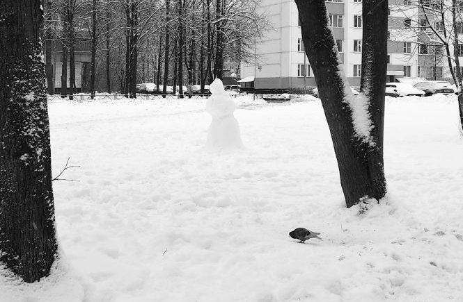 голубь и снеговик